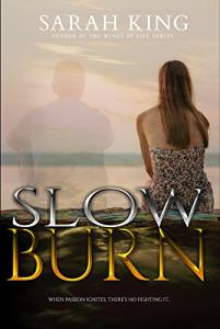 Slow Burn Sarah King Cover